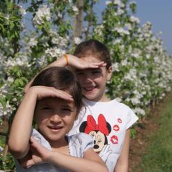 Kinder lieben unseren Apfelgarten