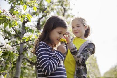Kinder Natur Garten