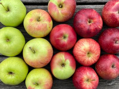 Äpfel frisch